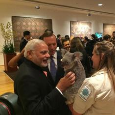 Koala that Modi cuddled was specially trained to deal with G20 leaders