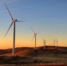 Why falling oil prices should not undermine investment in green energy