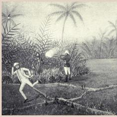 'Will you shoot a tiger?' Pictorial advice from an Englishman in 1902 on how to hunt in India