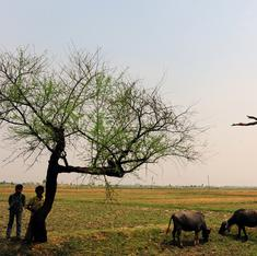 Why the Modi government must work on land reform before land acquisition