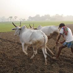 India's real skills challenge: 263 million farm workers