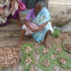 Goa's appetite for wild mushrooms is hurting the ecology of Western Ghats