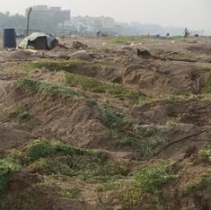 Bhaji on the beach: Why growing baby methi on Mumbai's Versova beach should not be illegal