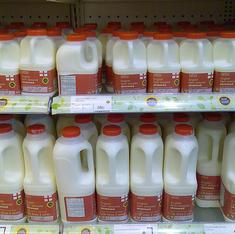 Is milk good for me, or should I ditch it?