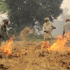 Why we should be alarmed at NASA's images of burning fields in Punjab (but also get used to them)