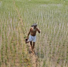 WTO talks explained: What's at stake for Indian agriculture