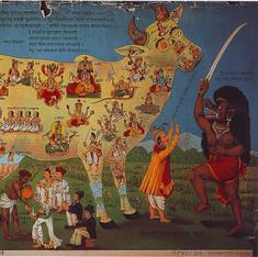 How calendar art helped make the cow a divine figure in India