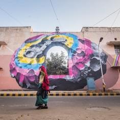 'It's pretty, but what is it?': Delhi gawps at its giant new murals