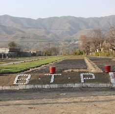 A 'Billion Tree Tsunami' takes hold in Pakistan