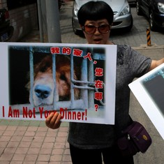 Video: Have protests had any impact on Yulin's dog meat festival?