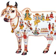 Read what Ambedkar wrote on why Brahmins started worshipping the cow and gave up eating beef