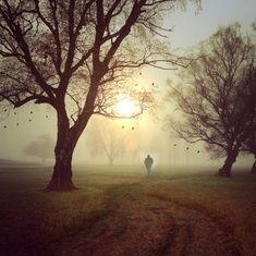 'A morning walk': A poem by Gulzar