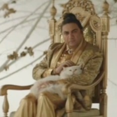 Taher Shah's new year love note to humanity is a cat video in disguise