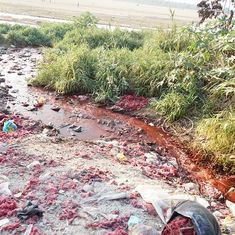 Streams of red, green and yellow: The water in a Bihar village is too toxic to drink