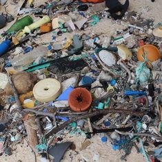 Remote South Pacific island has highest plastic density in the world, says report