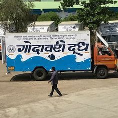Cattle trade rules: In Maharashtra's milk district, dairy farmers say it's the end of their business
