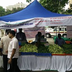 Farmers' markets in cities are useful for consumers, but do they really help cultivators?