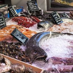 A tiny portion of the world's oceans could meet the rising global demand for seafood