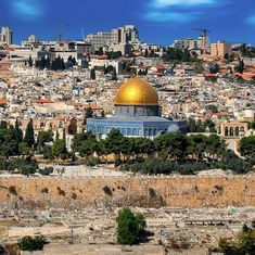 Why has Trump decided to recognise Jerusalem as the capital of Israel? Read this book to find out