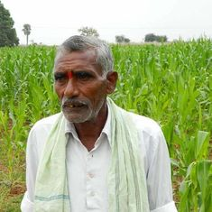 By ditching chemicals, an arid village in Telangana turned lush green