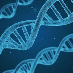 Lab notes: Scientists find genetic switch that decides fate of embryonic stem cells