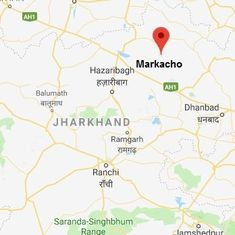 Jharkhand: Girl killed by dogs while relieving herself outside in an open defecation free district