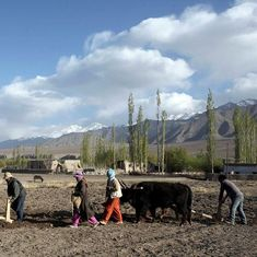 Bloom in the desert: Affordable technology is now helping Ladakh's farmers to grow food in winter