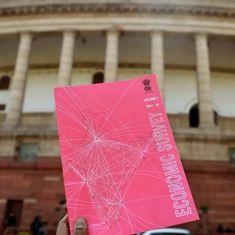 It's not so rosy anymore: Economic Survey paints a sobering picture