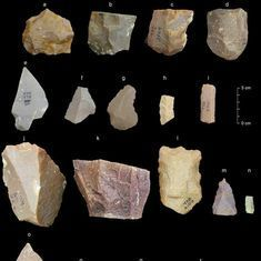 Indian stone tools could dramatically push back the date when modern humans first left Africa