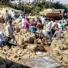 Case of tur dal farmers shows that hiking minimum support price won't help if implementation is poor