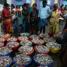 Odisha government asks authorities to check for formalin in fish from Andhra Pradesh