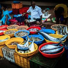 Goa stops eating seafood amid formalin scare, residents find government's hurried assurances fishy