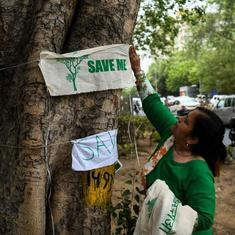 Modern Delhi's founders wanted its trees to last 300 years. We're killing them within a century