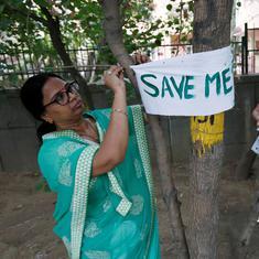 Delhi: National Green Tribunal defers hearing of plea seeking stay on cutting of trees