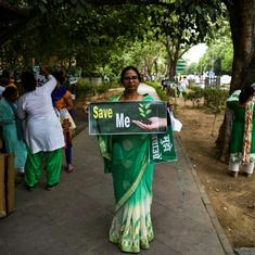 Delhi tree felling: Should bureaucrats or citizens plan the future of their cities?