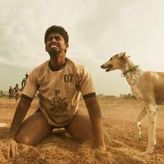 'Pariyerum Perumal', 'Masaan' and 'Kaala' to be screened at New York's first Dalit Film Festival