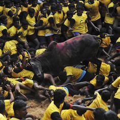 Animal rights: It's time Indian leftists  embraced the well-being of non-human creatures too